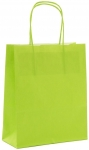 SAC KRAFT A POIGNEES TORSADEES - LOGISTIPAK - 23X30X12 VERT - LOT DE 50