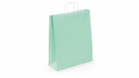 SAC KRAFT A POIGNEES TORSADEES - LOGISTIPAK - 35X40X14 VERT EAU - LOT DE 50